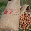 nocciole piemonte IGP sostenibili in sacchetto di juta