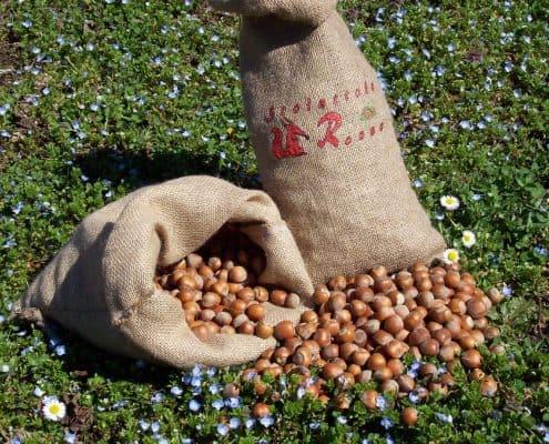 Nocciole Piemonte IGP in sacco di juta sostenibile