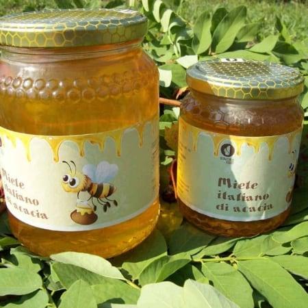miele di acacia apicoltura scoiattolo rosso vendita nocciole 500 1000